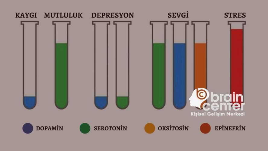 mutluluk hormonları nedir