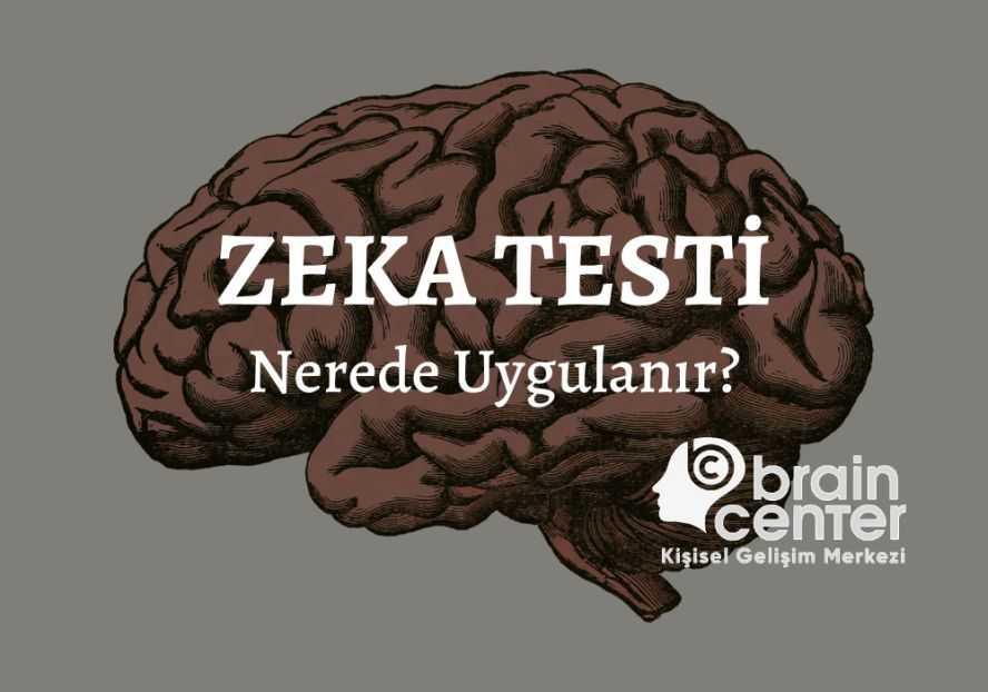 zeka testi nedir