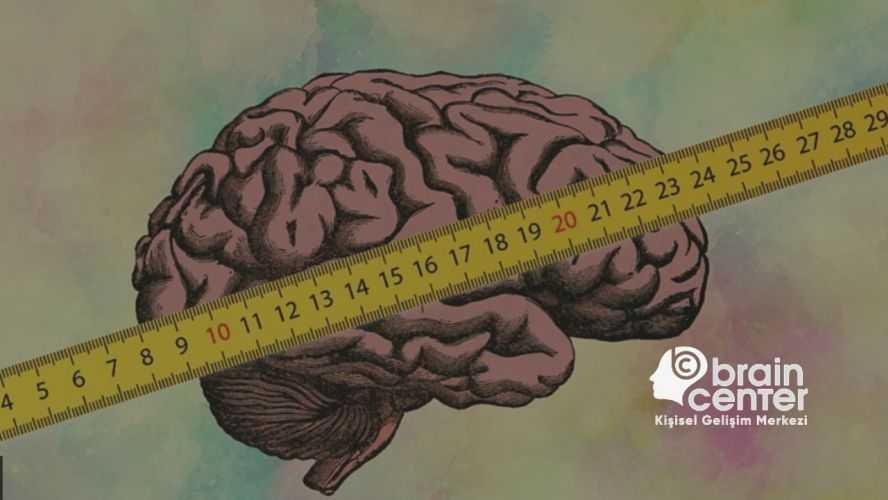 insan beyni kapasitesi nedir